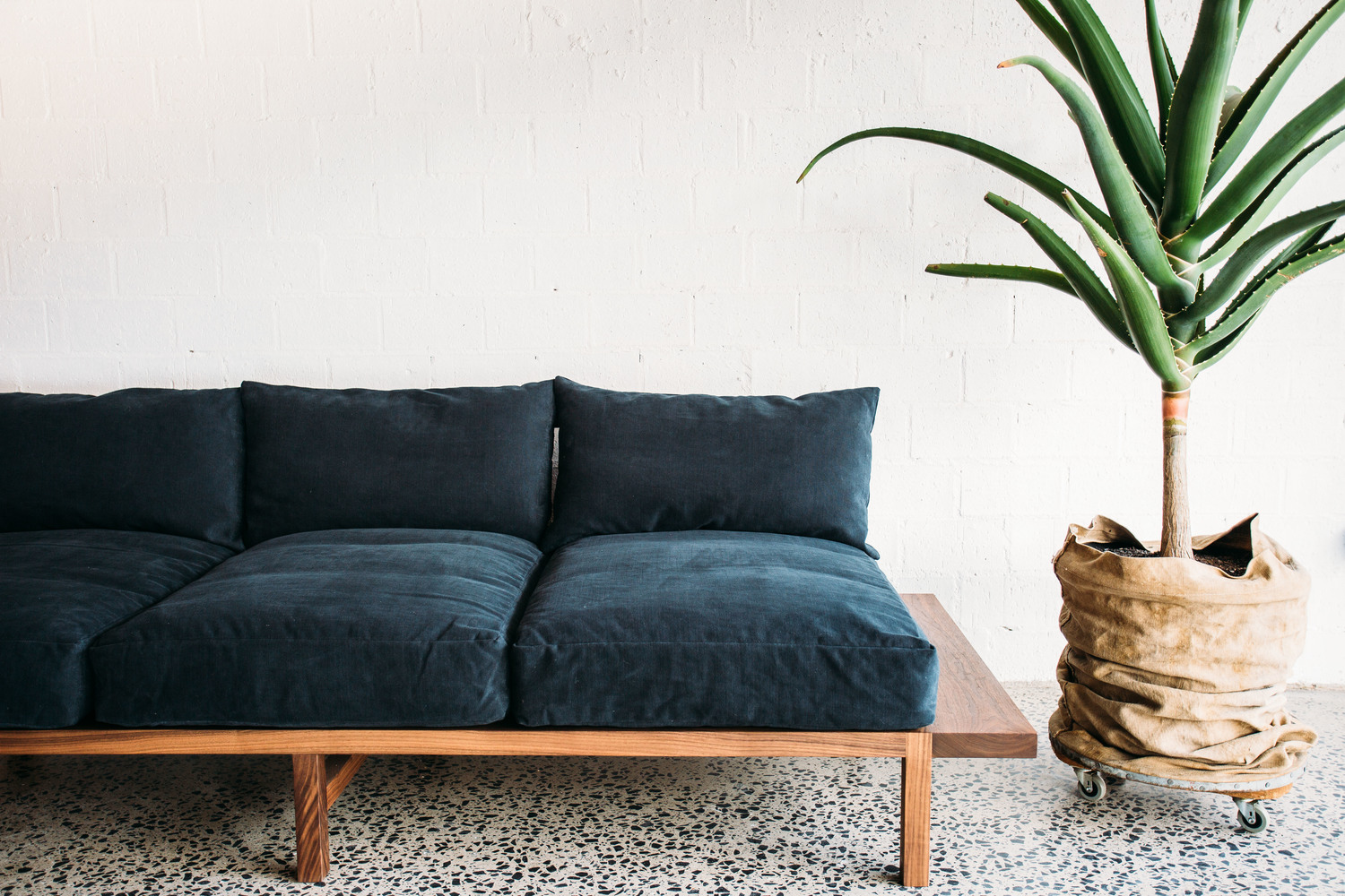The Finley Sofa - JD.Lee Furniture - Next to a plant