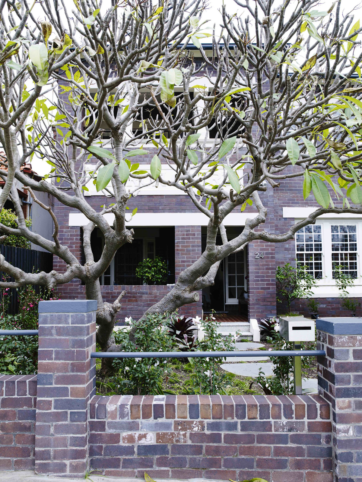 Coogee House - Australian Exterior Design - Madeleine Blanchfield Architects - Interior Archive