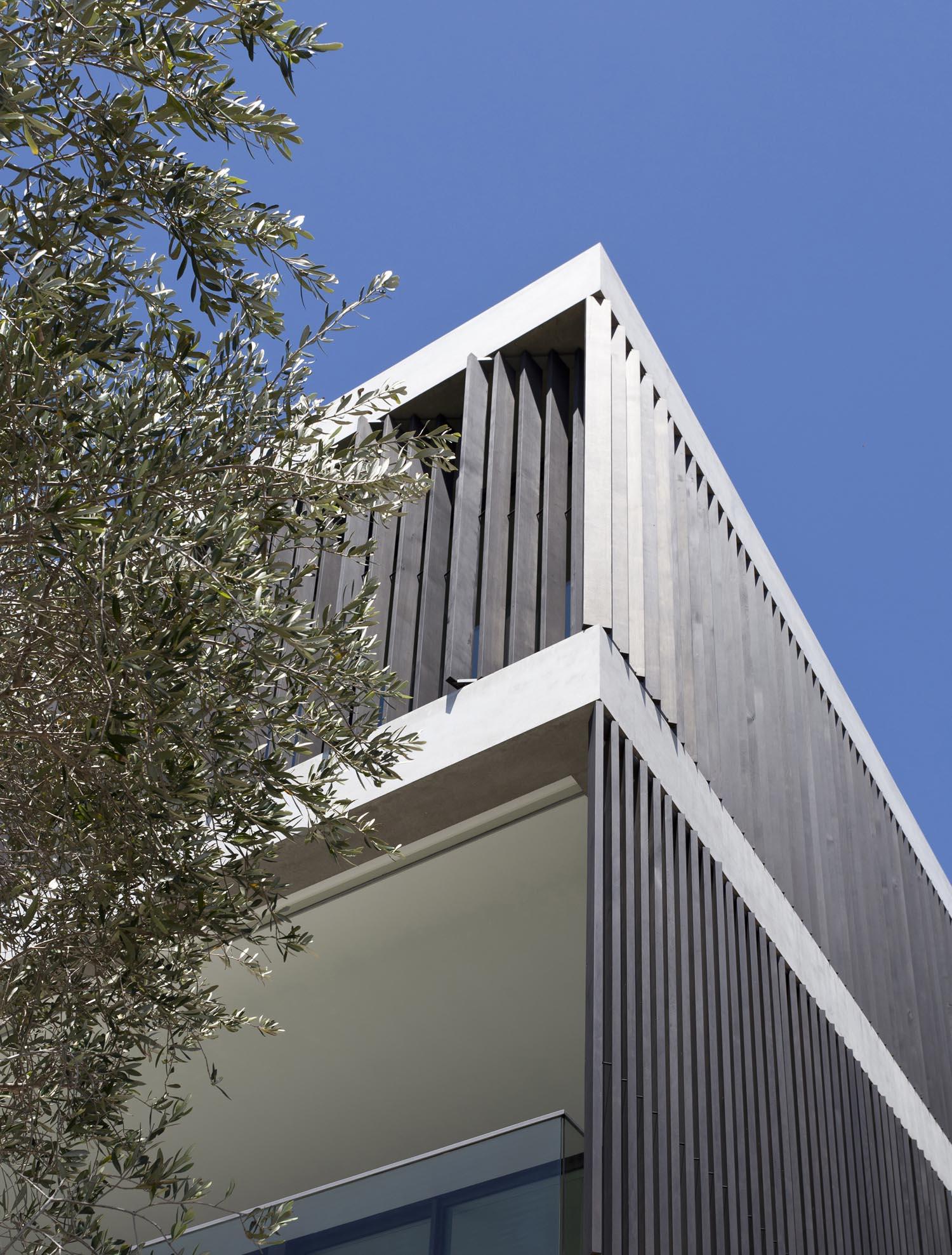 Gordon's Bay House - Australian Exterior Tree Corner - Madeleine Blanchfield Architects - Architecture Archive