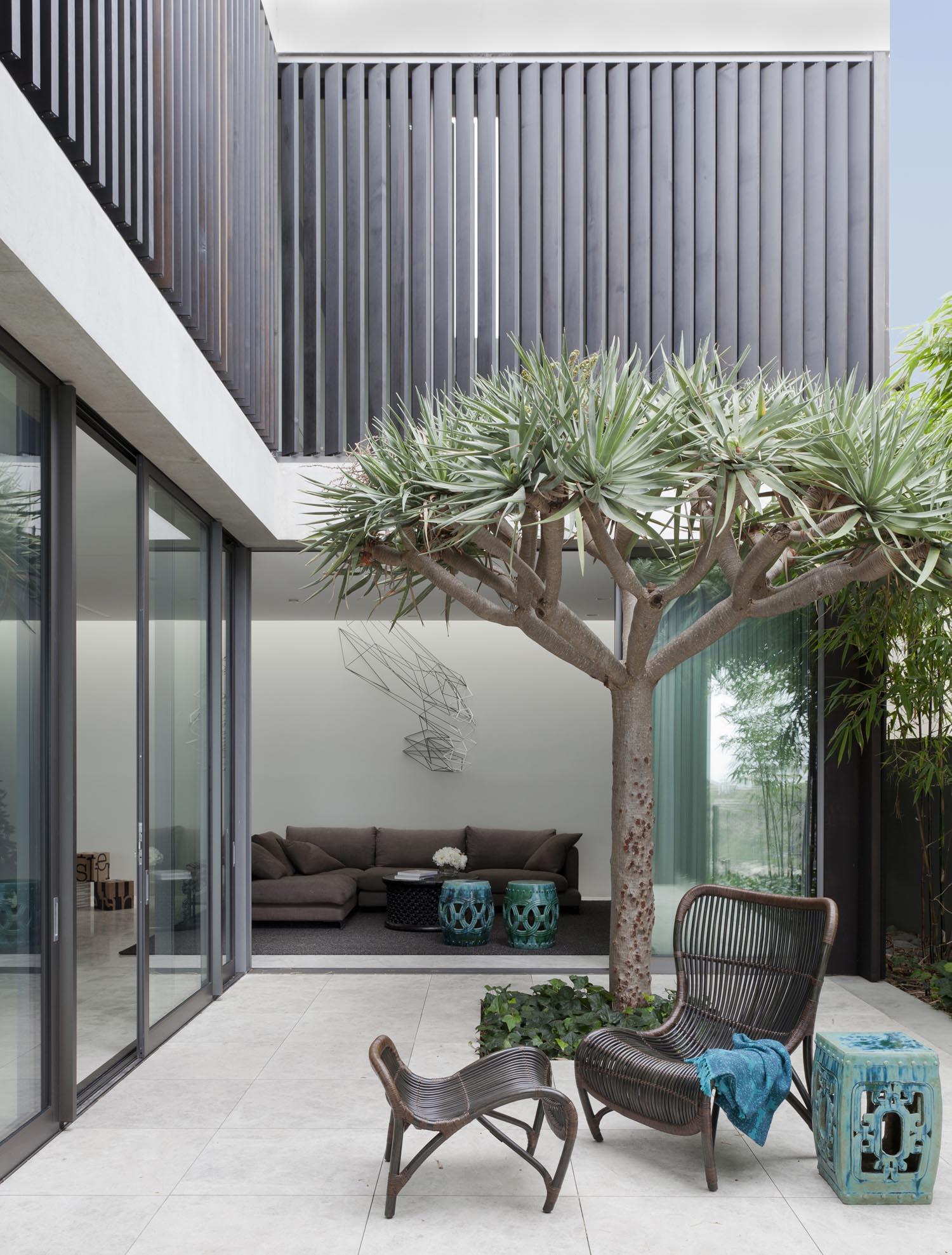 Gordon's Bay House - Australian Exterior Tree - Madeleine Blanchfield Architects - Architecture Archive