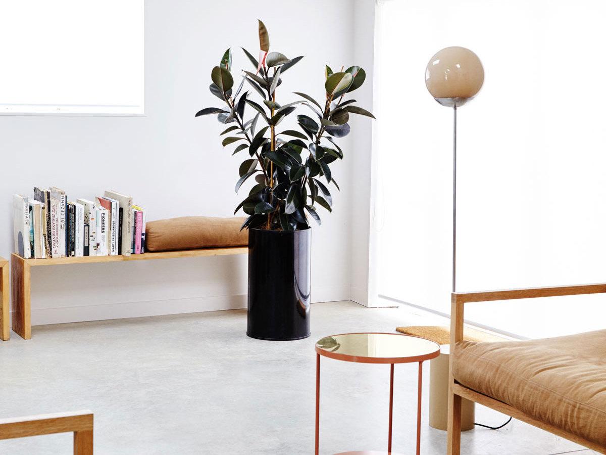 RD Sofa-Douglas & Bec-The Local Project-Australian Architecture & Design-Image 2