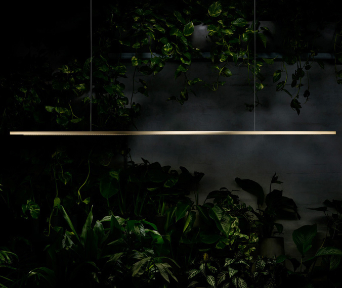 Highline by Archier - Product Local Australian Design - Tis The Season Article