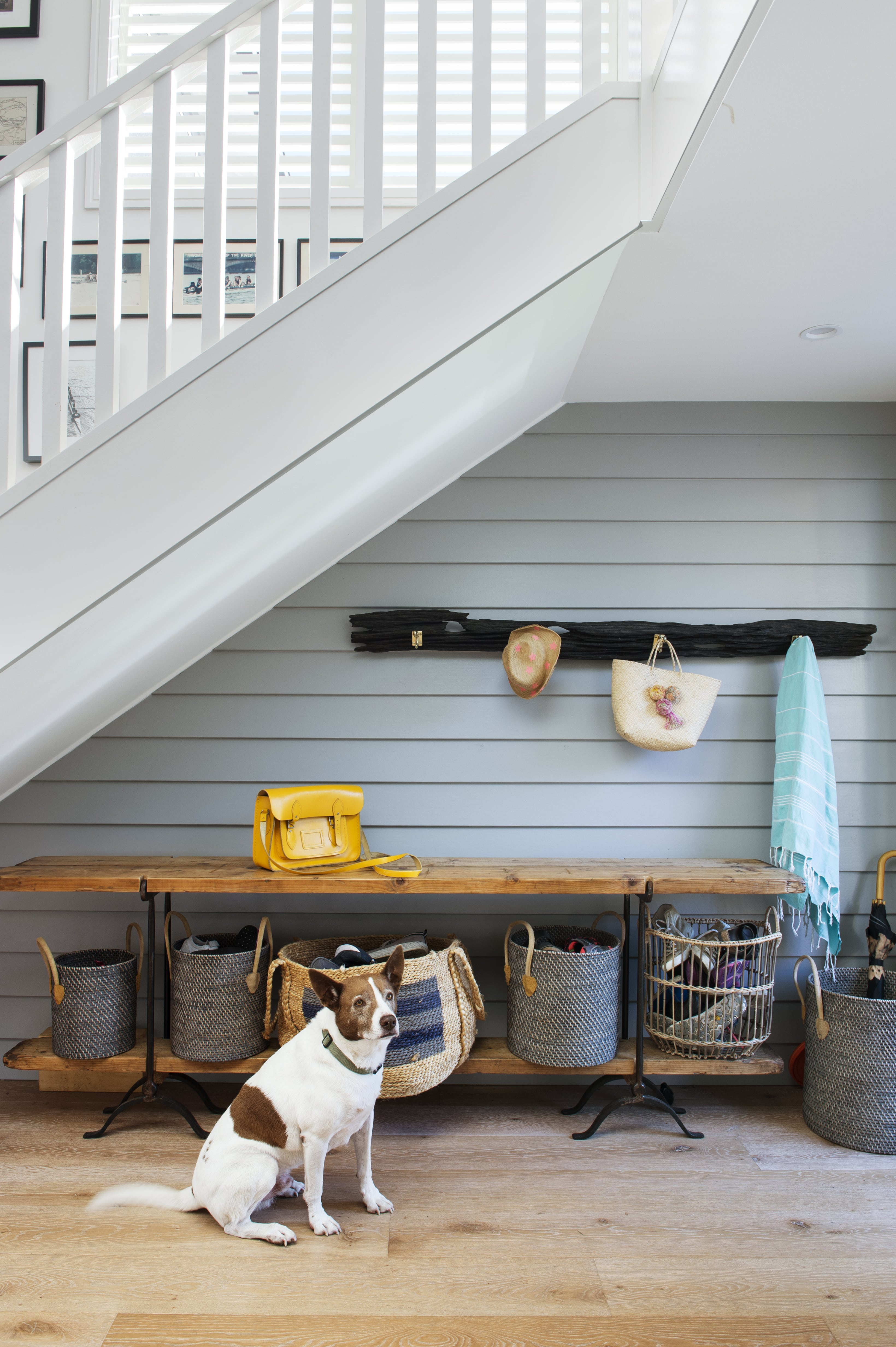 Gallery Of The Big Beach Shack By Tash Clarke Architects Local Australian Design And Interiors Freshwater, Nsw Image 2