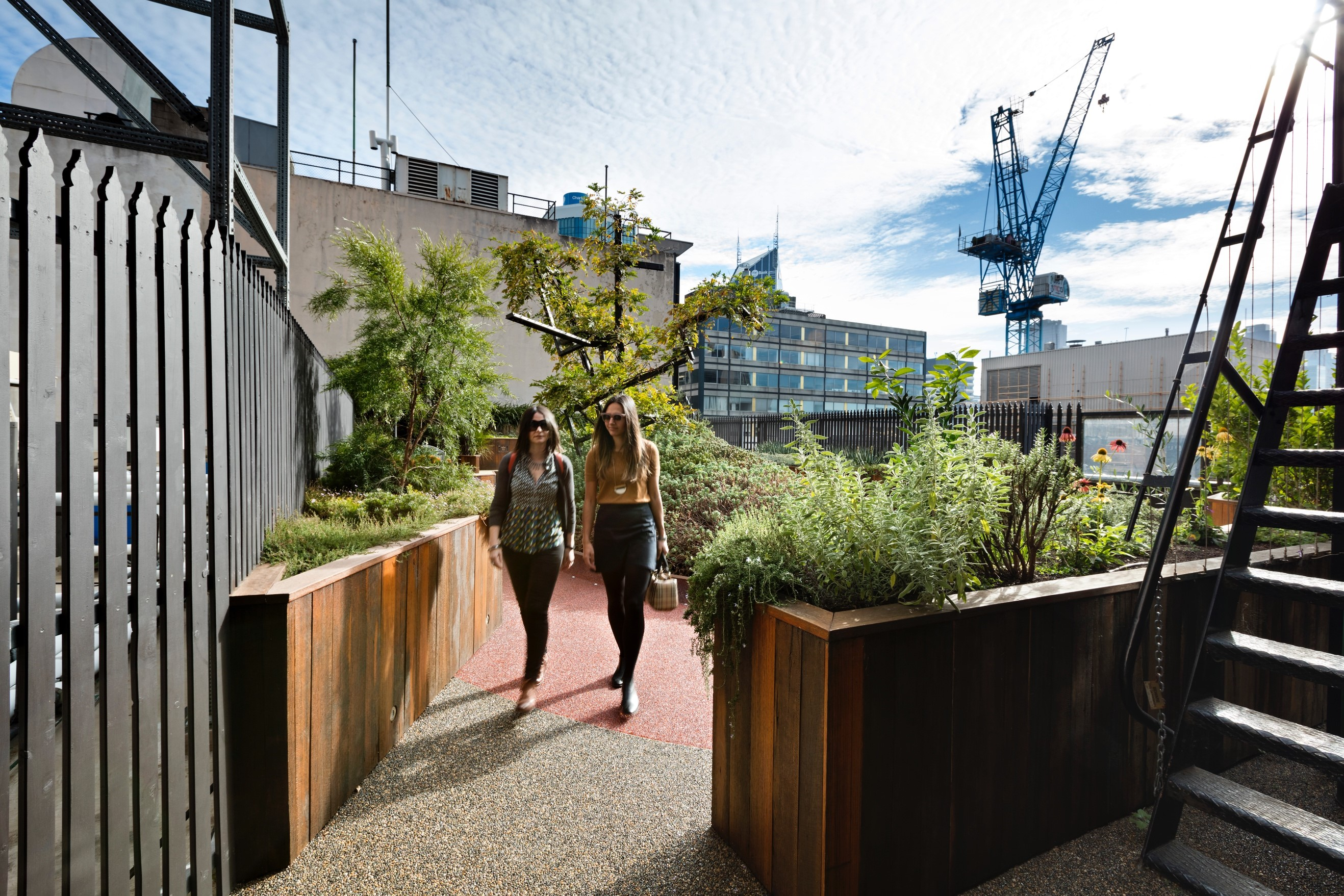 Gallery Of Growing Up Green Rooftop By Bent Architecture Local Australian Architecture & Design Melbourne, Vic Image 4