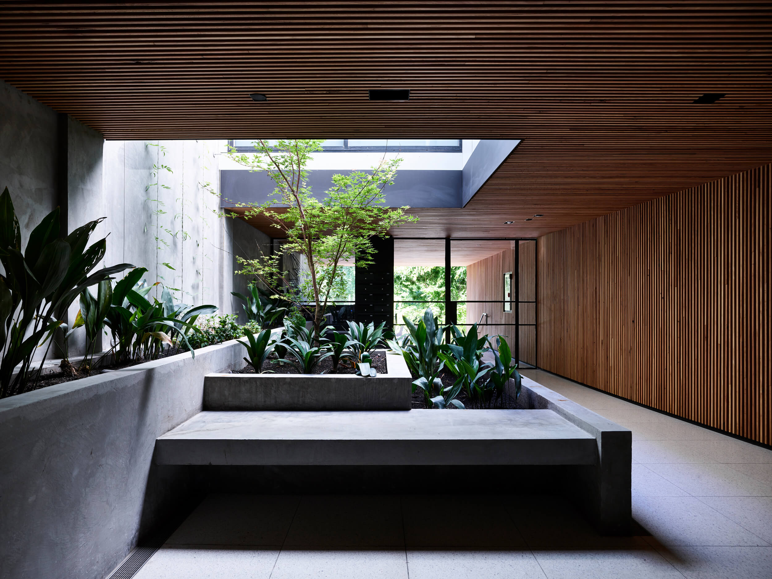 Holly Penthouse By Tom Robertson Architects Project Feature Melbourne, Australia Local Australian Design & Architectureholly R V Derek043